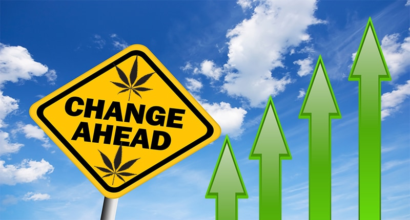 Are Cannabis Stocks Worth Buying Right Now