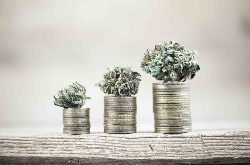Banking on your micro's future