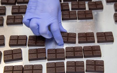Big Bhang Theory: Canadians are ready for cannabis-infused milk and dark chocolates
