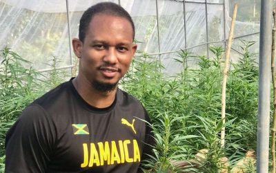 Knee injuries forced Olympic sprinter Michael Frater into retirement, but cannabis is helping him get back on his feet