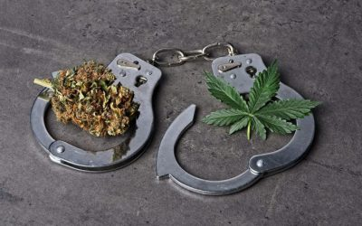 Need some cash to get a medical marijuana prescription? It's best not to try to steal stuff to get it