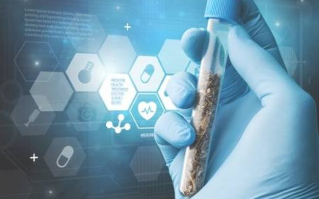 New Technology is Transforming the Cannabis Industry