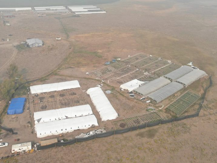 Aerial view of one of the illegal grow-ops busted in Oregon. /