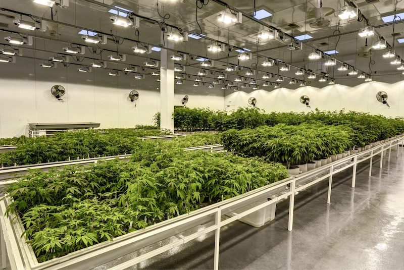 urban-gro, Inc. and Desert Aire Enter into Strategic Agreement to Provide GrowAire™ Solutions for Cannabis Cultivation Facilities